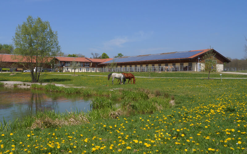 Riding facility Gut Mischenried